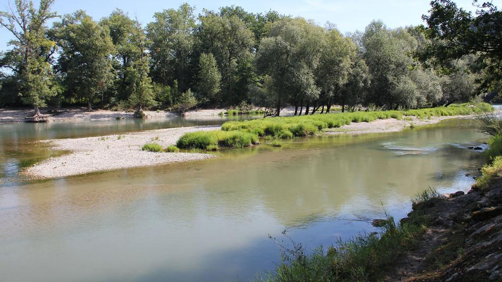 wöschnauer-schachen_restwasserstrecke_alte-aare