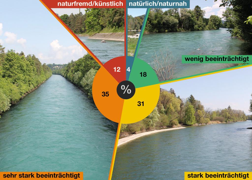oekomorphologische-kartierung_diagramm_aare_thun-bern2