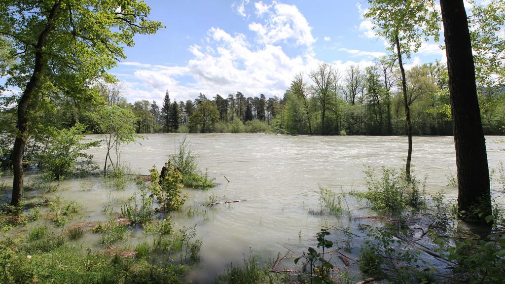 hochwasser_aare_wehrliau_selhofen_panorama