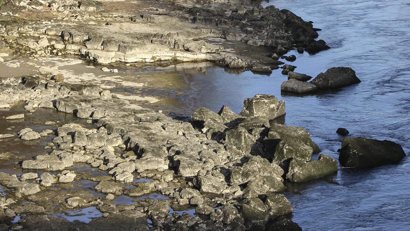 Die Felsterrassen in Flussnähe bestehen vorwiegend aus mikritischem Kalk der Wettinger Schichten