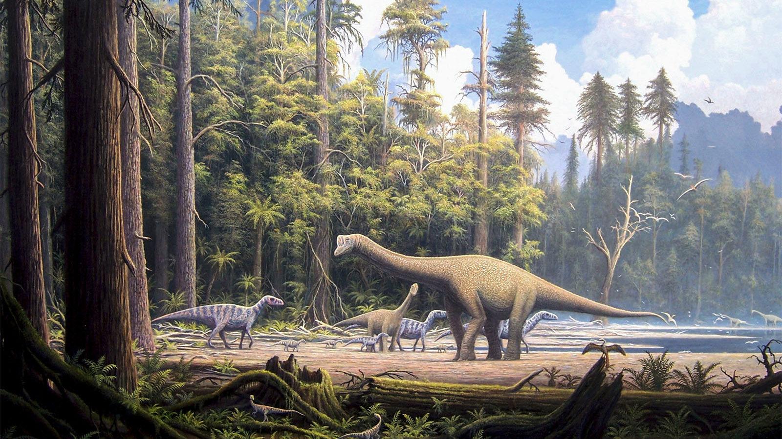 Urzeitliche Lebenswelt im Oberjura
