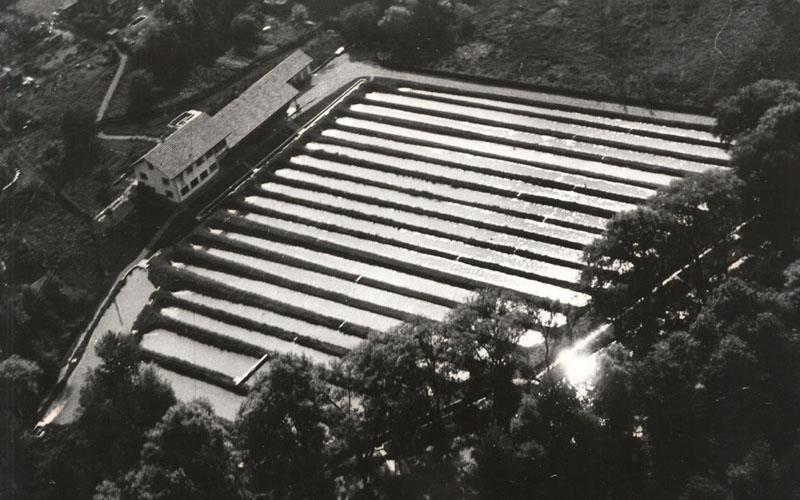 Historische Luftaufnahme der ehemaligen Fischzuchtanstalt. Foto: Infozentrum Eichholz