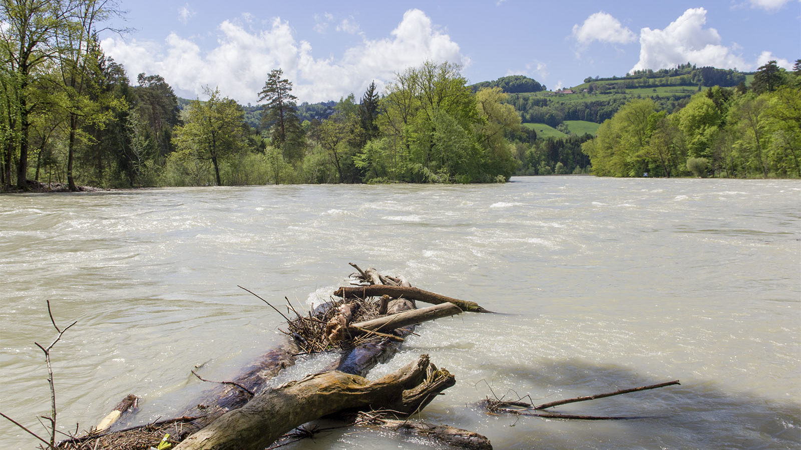 Noch in Bern stammen über 90% des Aarewassers aus dem Thunersee. Nach ergiebigen Regenfällen liefert der See oft noch während Tagen Hochwasser an die ausfliessende Aare. Gutes Wetter ist somit kein Garant für moderate Abflüsse