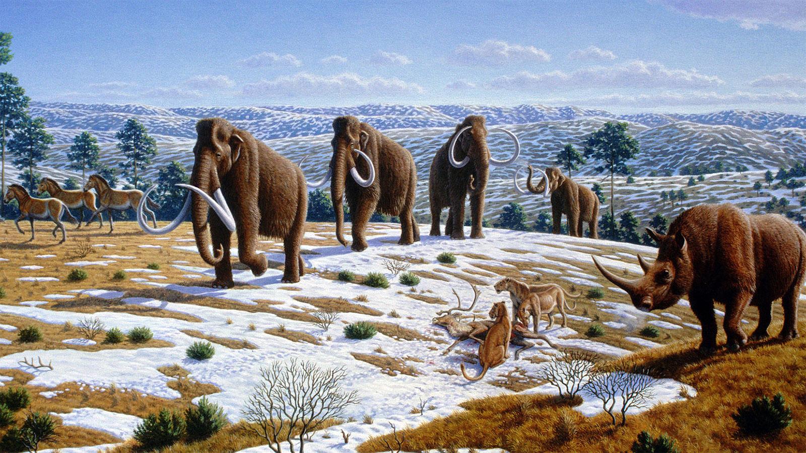 Pleistozäne Fauna in Nordspanien. Illustration: Mauricio Antón
