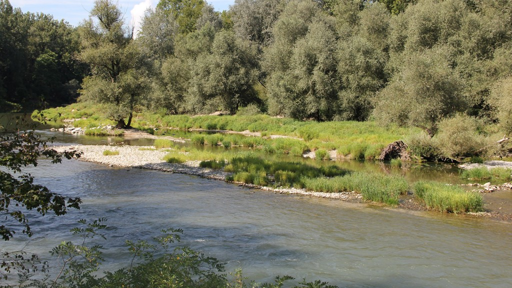 wöschnauer-rank_restwasserstrecke_alte-aare_furkationen