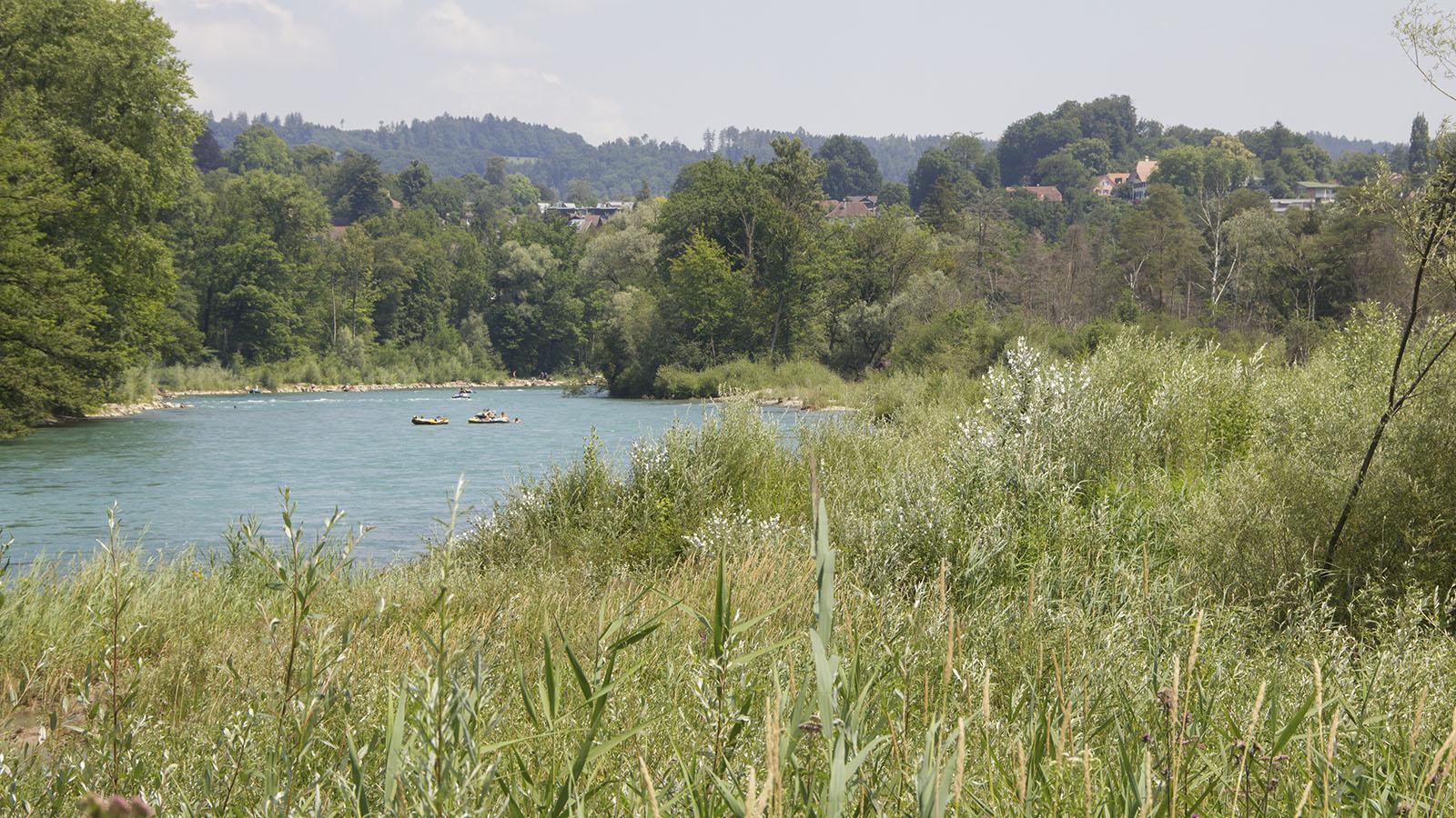 Renaturierter Flussabschnitt am Selhofen Zopfen