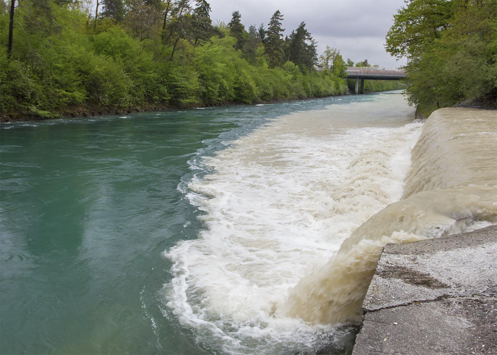 Während Gewittern können trübes Wasser und Schwemmholz in die Aare gelangen. Im Bild die Zulgmündung unterhalb von Thun
