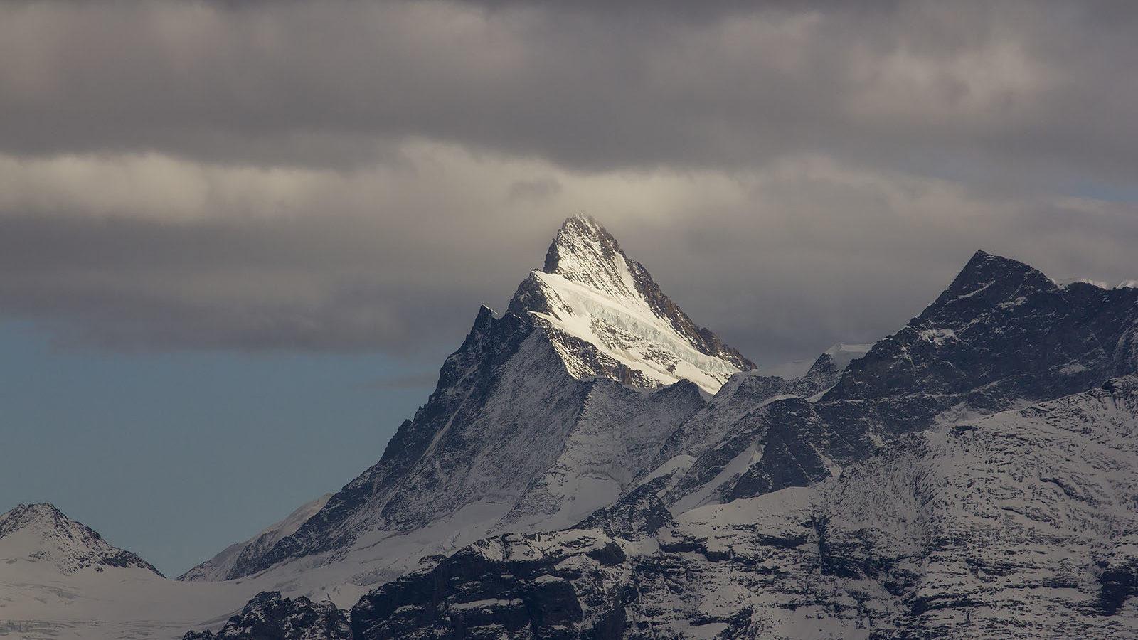 Ihr schroffes Äusseres erlangten die Alpen erst im Laufe des Eiszeitalter als Gletscher das Gebirge überprägten