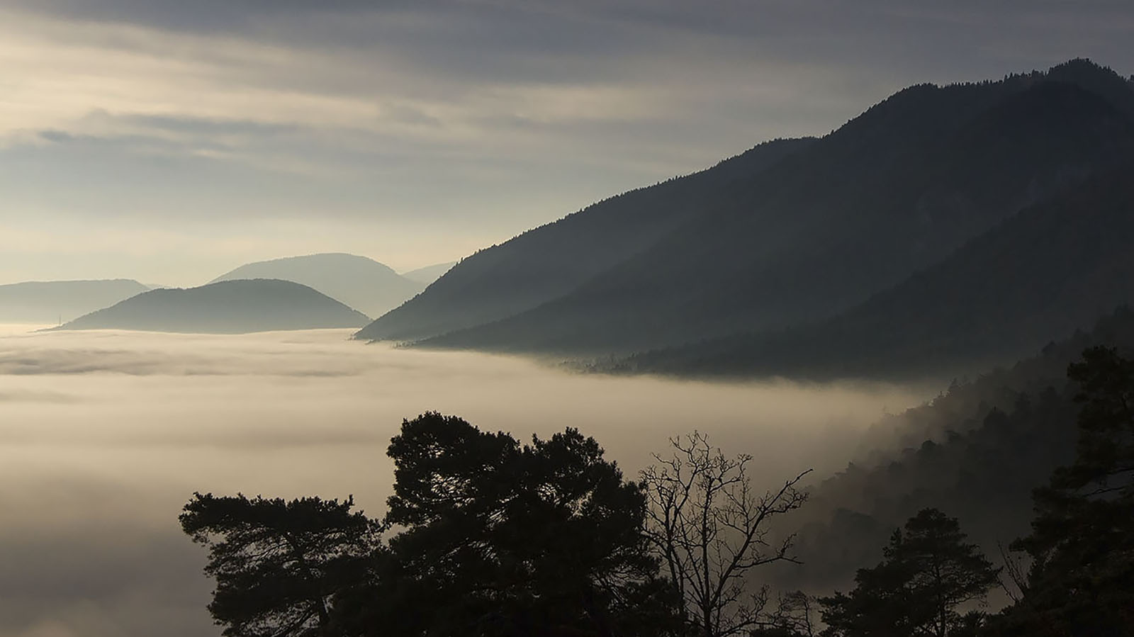 Mit einem Alter von rund 10 Millionen Jahren gilt der  Jura als geologisch junges Gebirge