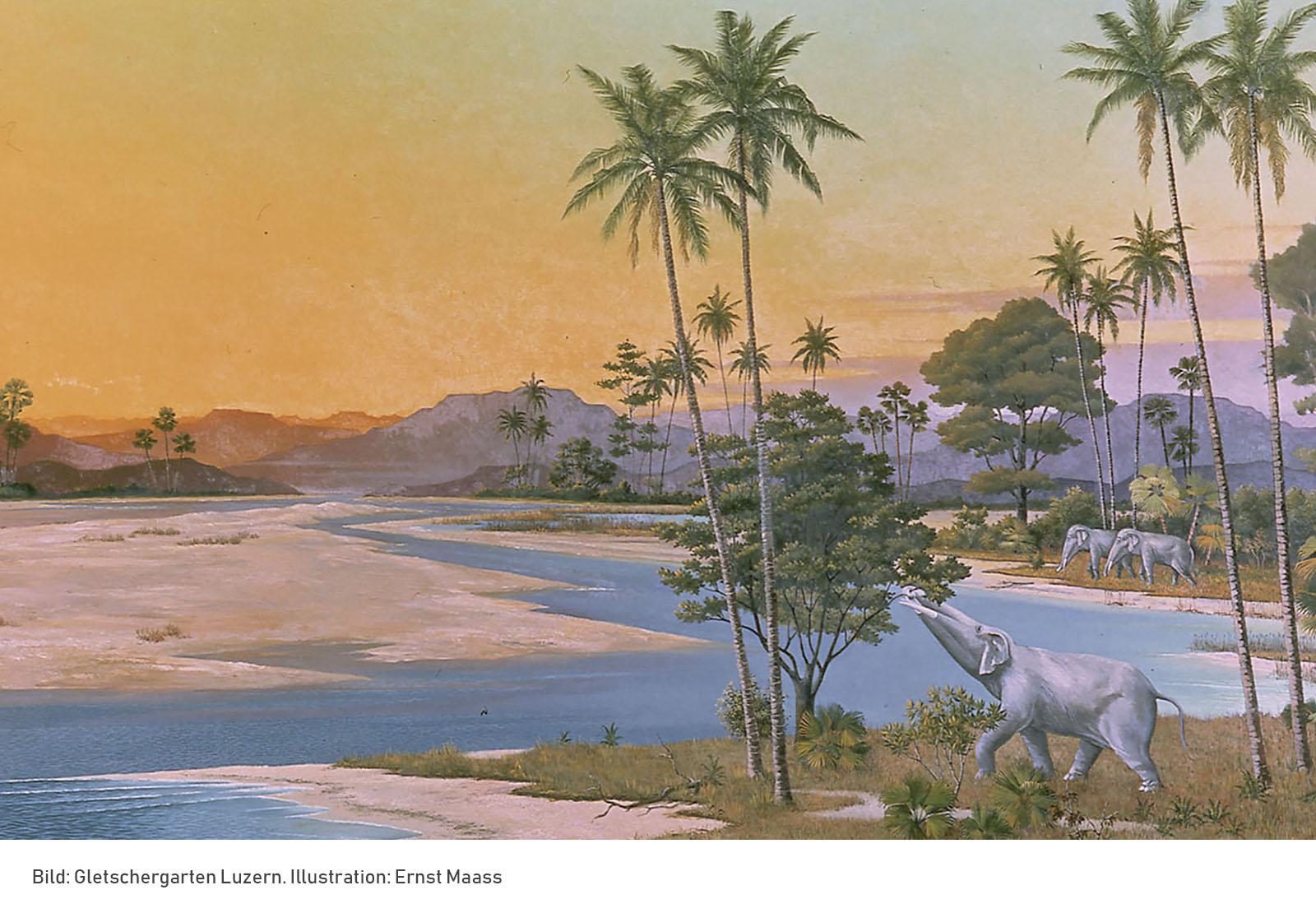 Miozäne Landschaft bei Luzern vor 20 Millionen Jahren