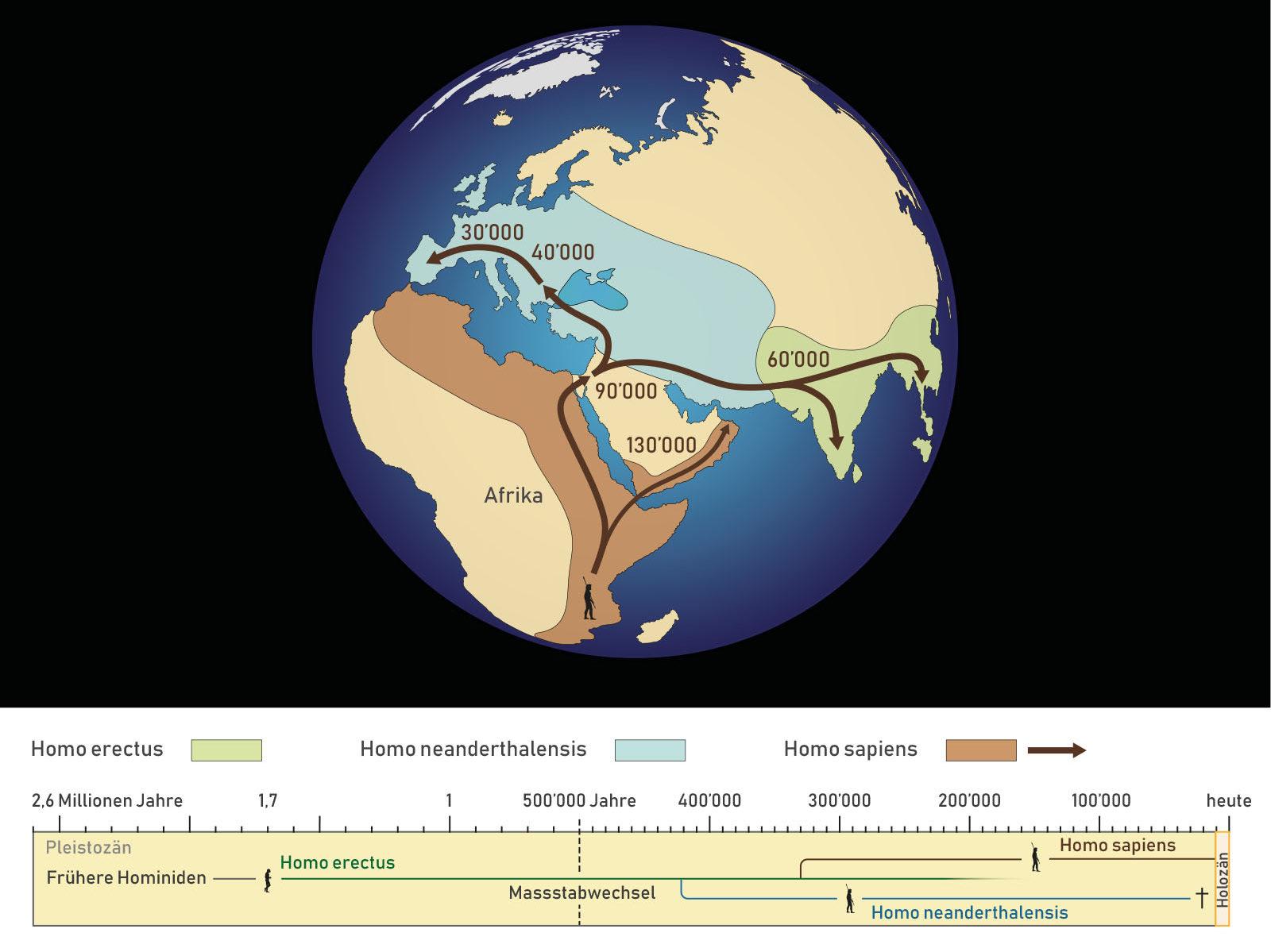 ausbreitung_menschen_homo-erectus_homo-sapiens_homo-neanderthale
